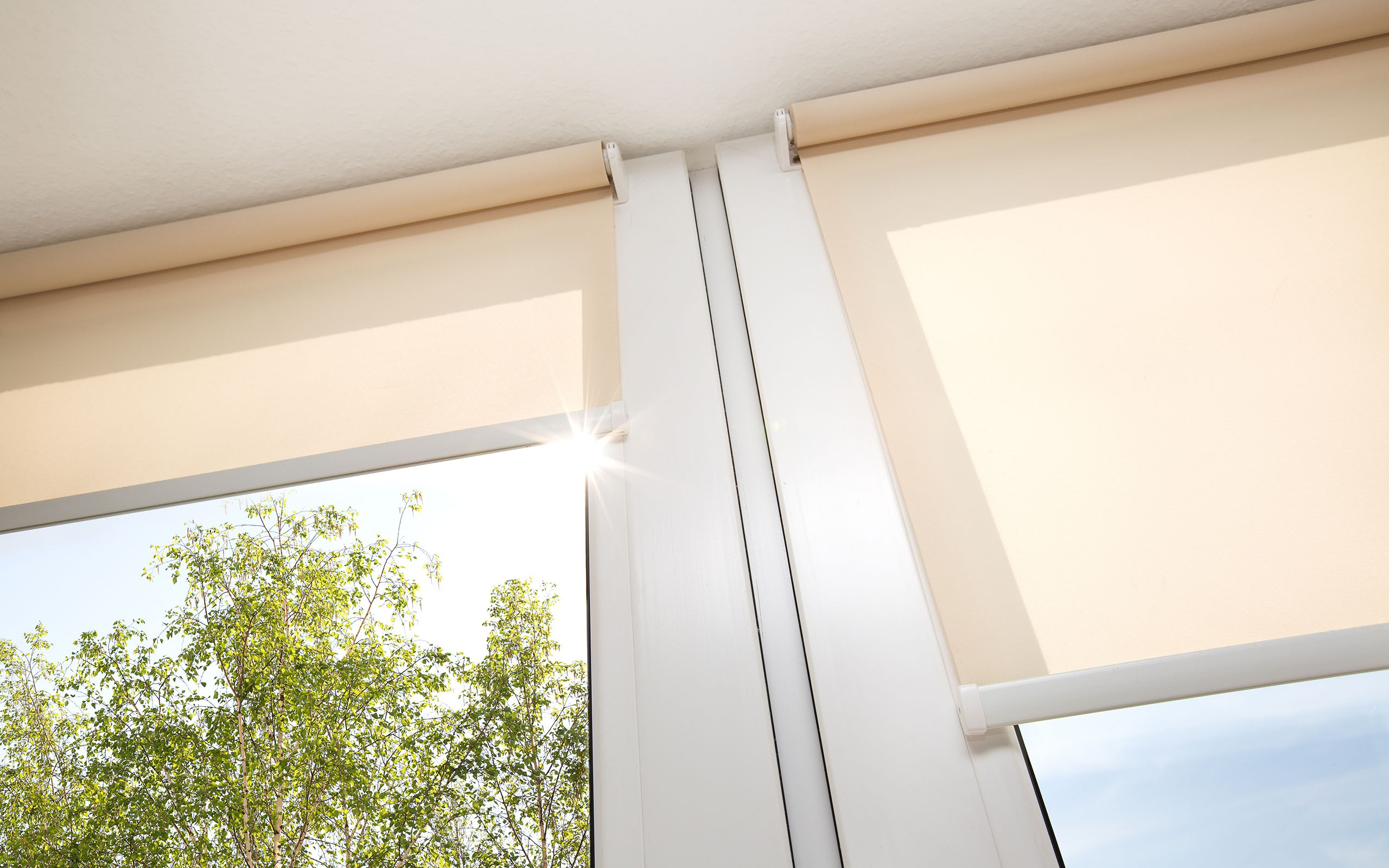 A bright window with light beige roller shades partially covering window facing green tree and sun
