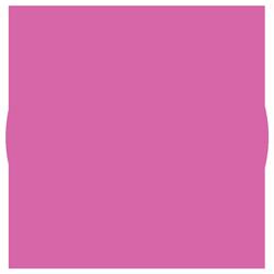 pink globe icon