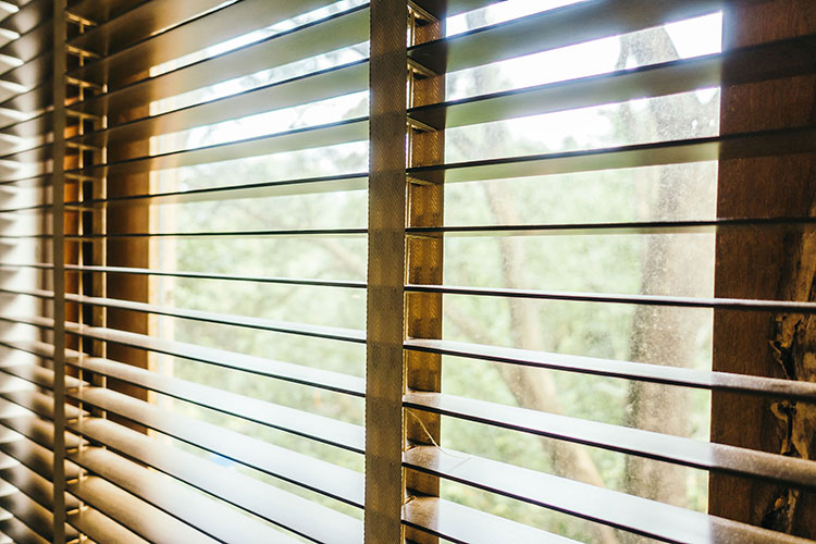 horizontal brown wood blinds overlooking forest during daytime